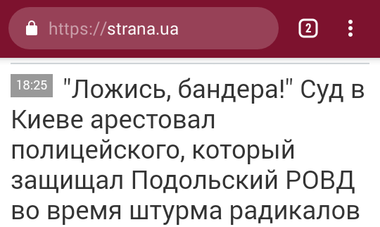 Police-and-Mass-Media - strana.ua-and-police.png